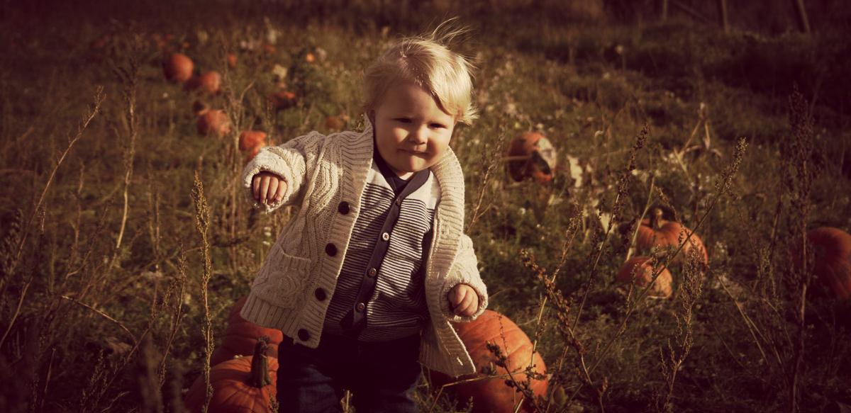 October Farmer Copleys Pumpkins-21