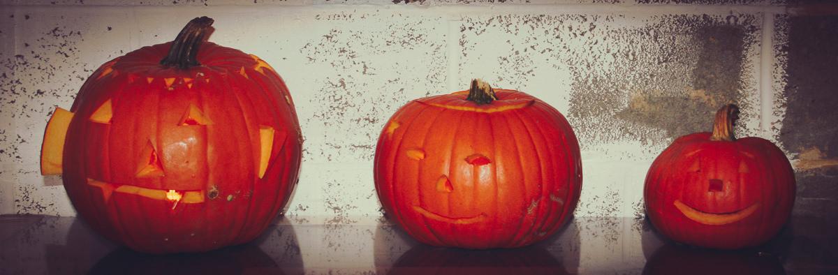 October Farmer Copleys Pumpkins-94