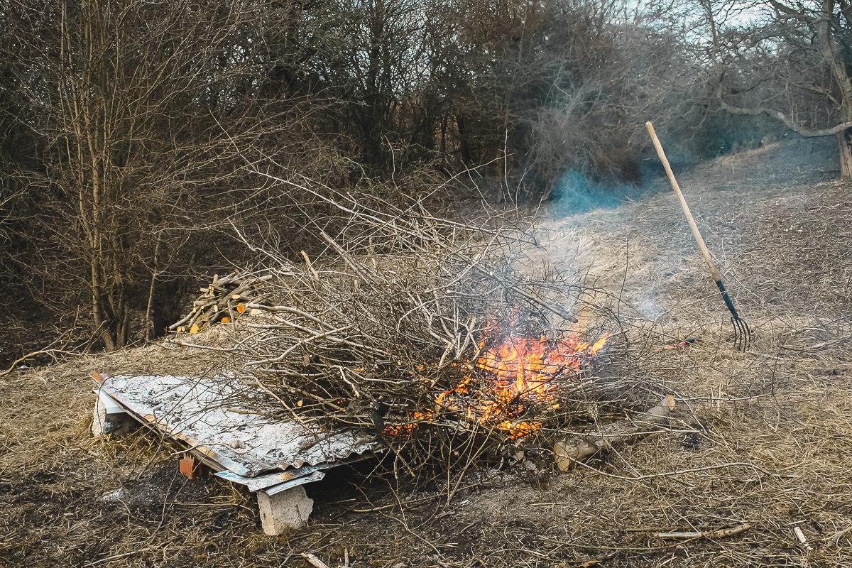 February Yorkshire Wildlife Team Day 2015-81