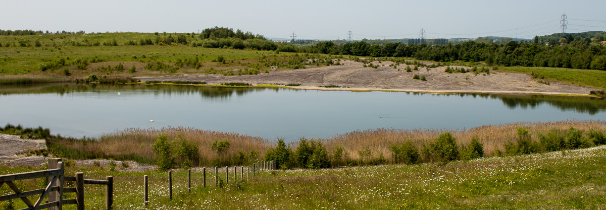 June Fairburn Ings - RSPB-6